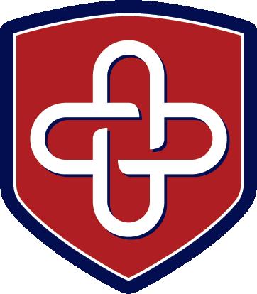 VSINIS logo